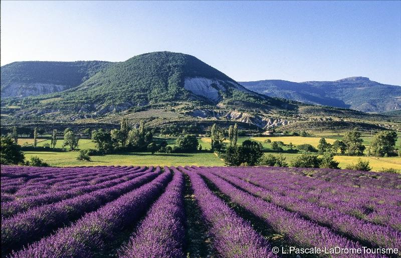 Photo credit: L Pascale - The Drôme