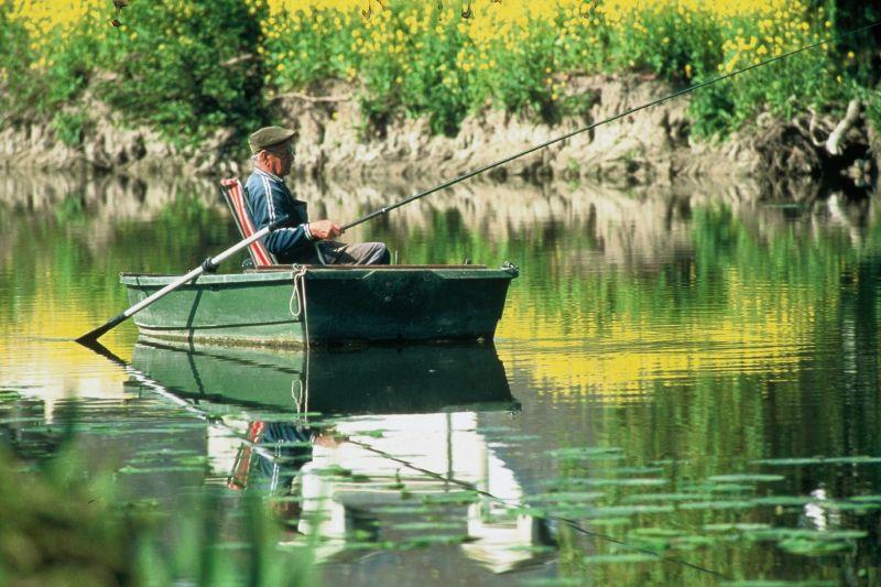 The Loir - Image courtesy of Stevan Lira